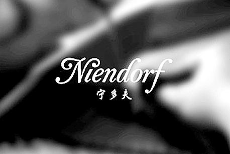 宁多夫钢琴网站建设