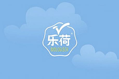 乐荷网站设计